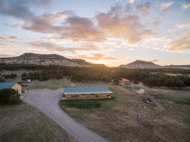1177 Nm-96, Lindrith, NM 87046 (MLS #201900762) :: The Very Best of Santa Fe