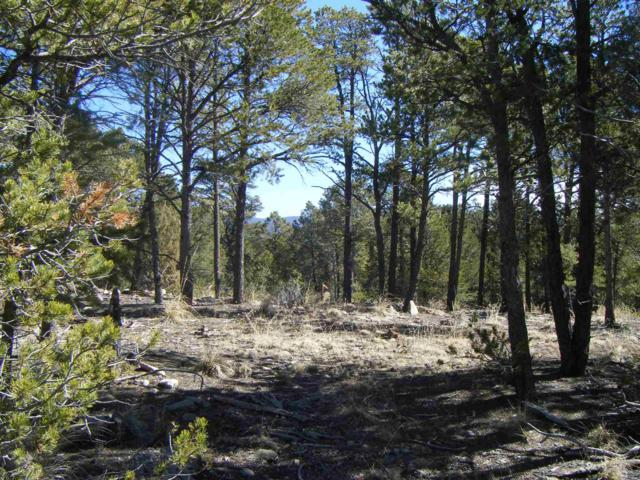 Lot 16 Hawks Landing, Pecos, NM 87552 (MLS #201900772) :: The Very Best of Santa Fe