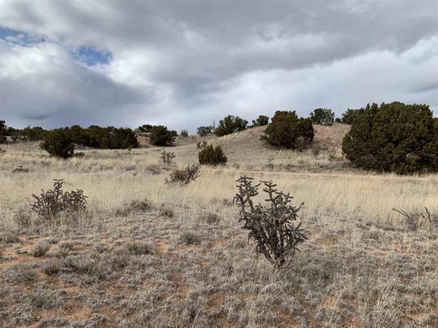 4 Hondo Ridge Road, Santa Fe, NM 87508 (MLS #201900808) :: The Very Best of Santa Fe