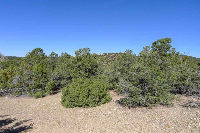 1953 Cerros Colorados Lot 105, Santa Fe, NM 87501 (MLS #201900905) :: The Desmond Group