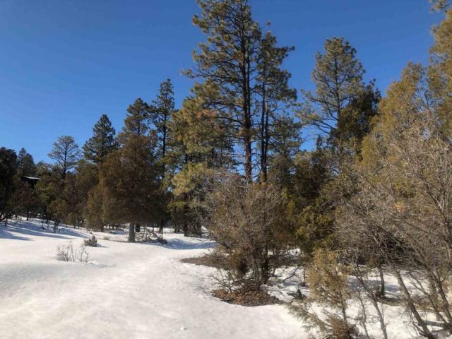Rim Drive, Rutheron, NM 87551 (MLS #201900972) :: The Very Best of Santa Fe