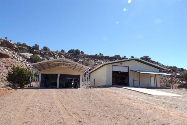 3 Bull Head Place, Conchas, NM 88416 (MLS #201901008) :: The Desmond Group