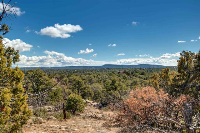 69 San Sebastian Road, Tract 18-A, Santa Fe, NM 87505 (MLS #201901079) :: Stephanie Hamilton Real Estate