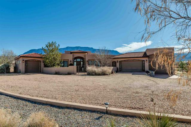 10100 Anaheim Ave, Albuquerque, NM 87122 (MLS #201901202) :: The Bigelow Team / Realty One of New Mexico