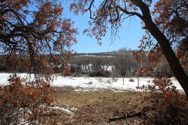 TBD Lot 1 - Racr 421, Capulin, Gallina, NM 87017 (MLS #201901212) :: The Bigelow Team / Realty One of New Mexico