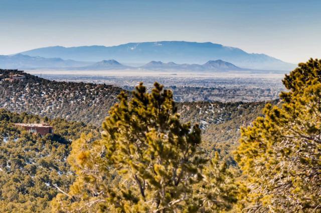 1230 S Summit Drive Lot 10, Santa Fe, NM 87501 (MLS #201901231) :: The Very Best of Santa Fe
