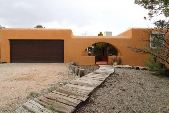 103 Piedra Loop, Los Alamos, NM 87544 (MLS #201901245) :: The Bigelow Team / Realty One of New Mexico