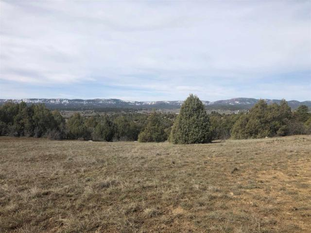TBD Encino Drive Willow Way, Chama, NM 87520 (MLS #201901385) :: The Very Best of Santa Fe