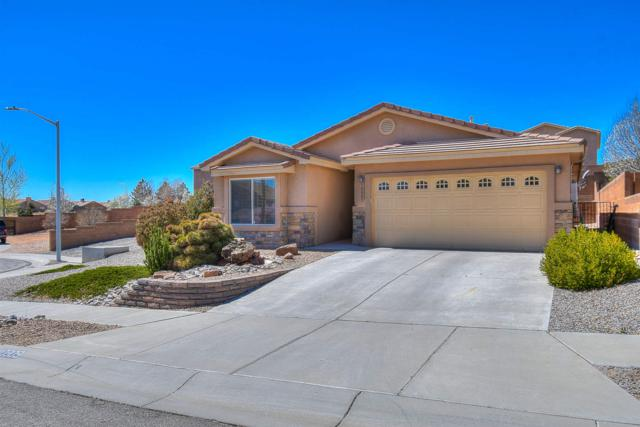 10809 Retanas Place Nw, Albuquerque, NM 87114 (MLS #201901419) :: The Very Best of Santa Fe