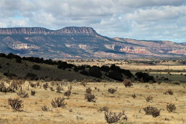 96 247.7 Acres, Abiquiu, NM 87510 (MLS #201901447) :: The Bigelow Team / Realty One of New Mexico