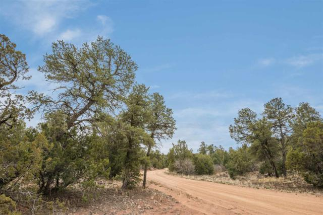 73 Cresta Pequena, Santa Fe, NM 87505 (MLS #201901462) :: The Bigelow Team / Realty One of New Mexico