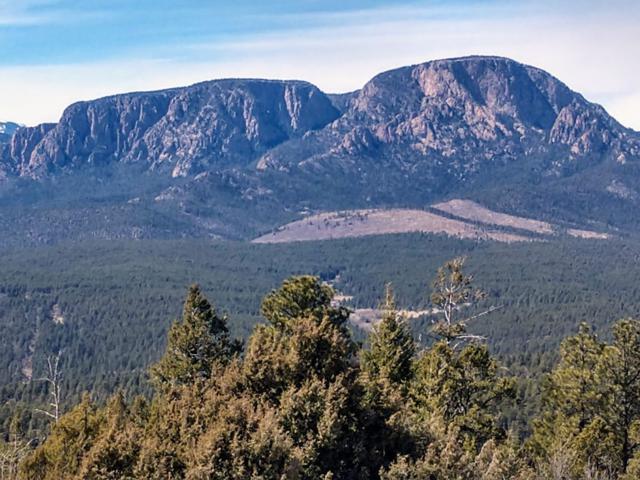 Lot 3 Santa Fe Mountain Ranch, Las Vegas, NM 87701 (MLS #201901478) :: The Very Best of Santa Fe