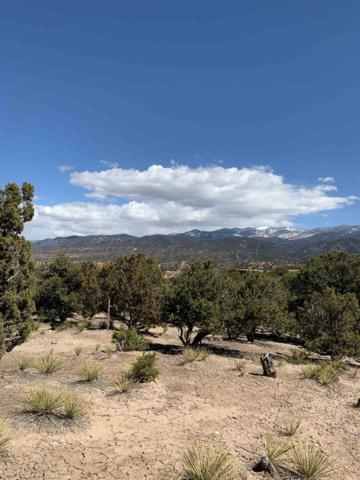 2945 Aspen View Lot 192, Santa Fe, NM 87506 (MLS #201901484) :: The Desmond Group