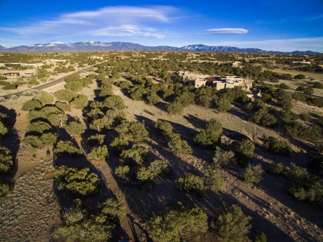 62 Mustang Mesa, Santa Fe, NM 87506 (MLS #201901521) :: The Bigelow Team / Realty One of New Mexico