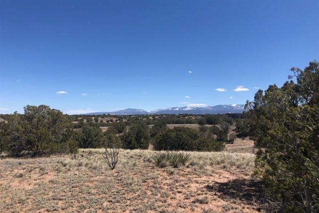 24 Campo Rancheros, Lot 72, Santa Fe, NM 87506 (MLS #201901531) :: The Bigelow Team / Realty One of New Mexico