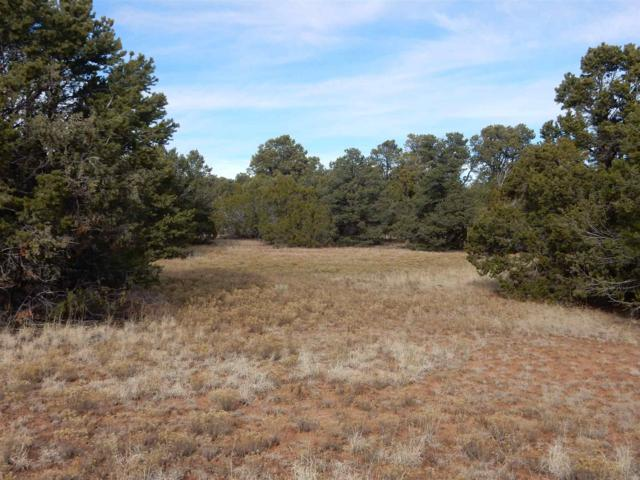 Apache Ridge Road, Lot 7, Tract 3-B, Santa Fe, NM 87508 (MLS #201901542) :: The Bigelow Team / Realty One of New Mexico