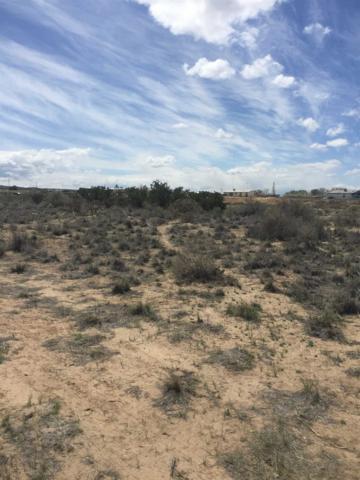 1034-B Cr 39, Alcalde, NM 87582 (MLS #201901597) :: The Very Best of Santa Fe