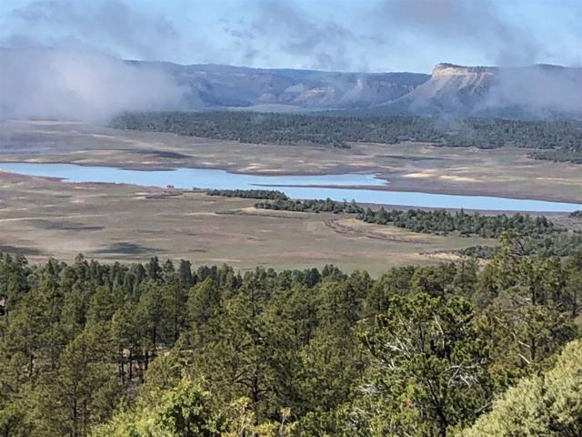TBD Elk Lane, Chama, NM 87520 (MLS #201901630) :: The Very Best of Santa Fe