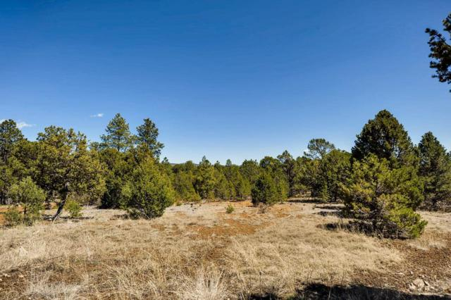 6 Dancing Hawk, Pecos, NM 87552 (MLS #201901733) :: Berkshire Hathaway HomeServices Santa Fe Real Estate