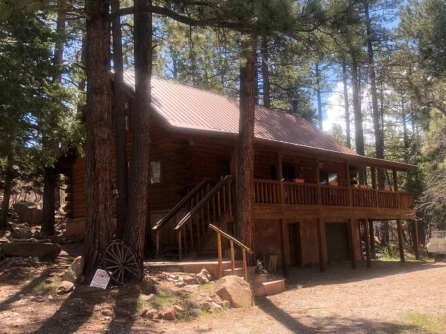 Falls Creek Road, Chama, NM 87520 (MLS #201901813) :: The Very Best of Santa Fe