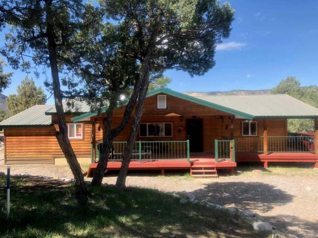 12 South Leaning Pine Dr #12, Los Ojos, NM 87551 (MLS #201901843) :: The Desmond Hamilton Group