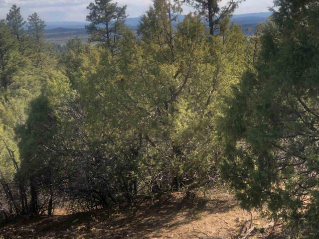 Unit 6 Tract 67, Ponderosa S/D, Chama, NM 87520 (MLS #201901865) :: The Very Best of Santa Fe