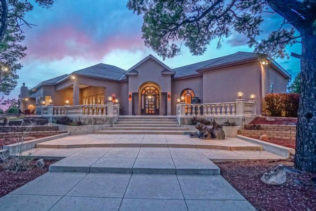 2160 Highway 595, Lindrith, NM 87029 (MLS #201901906) :: The Very Best of Santa Fe