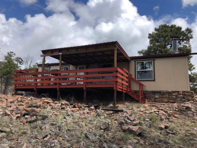 1 Elk Lane 1 Elk Lane, Los Ojos, NM 87575 (MLS #201901951) :: The Desmond Group