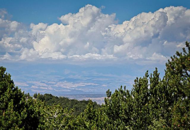 3245 Paseo Del Monte, Santa Fe, NM 87501 (MLS #201901952) :: The Desmond Group