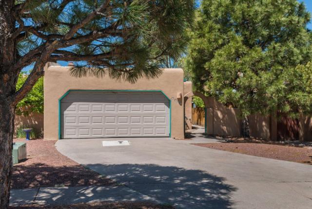 2948 Camino Piedra Lumbre, Santa Fe, NM 87505 (MLS #201901954) :: The Desmond Group