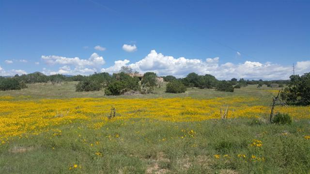 1 Enebro Place, Santa Fe, NM 87508 (MLS #201902126) :: The Desmond Group