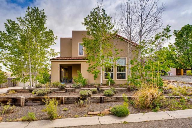 4305 Lone Raven Lane, Santa Fe, NM 87507 (MLS #201902133) :: The Desmond Group