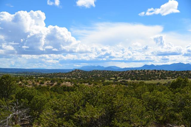 47 Southern Crescent, Santa Fe, NM 87540 (MLS #201902200) :: The Desmond Group