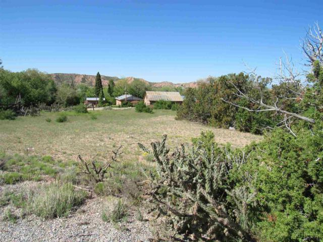12 Camino De Los Bacas, Chimayo, NM 87522 (MLS #201902206) :: The Bigelow Team / Realty One of New Mexico