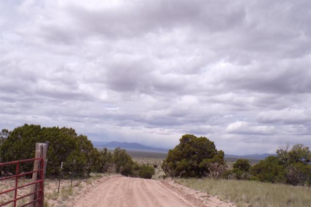 146 Rough Road #C, Stanley, NM 87056 (MLS #201902235) :: The Very Best of Santa Fe