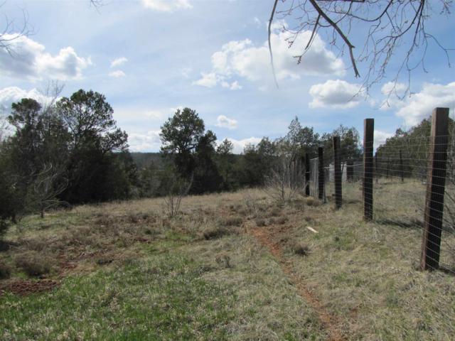 18 Camino Dos Millas, Glorieta, NM 87535 (MLS #201902237) :: The Very Best of Santa Fe