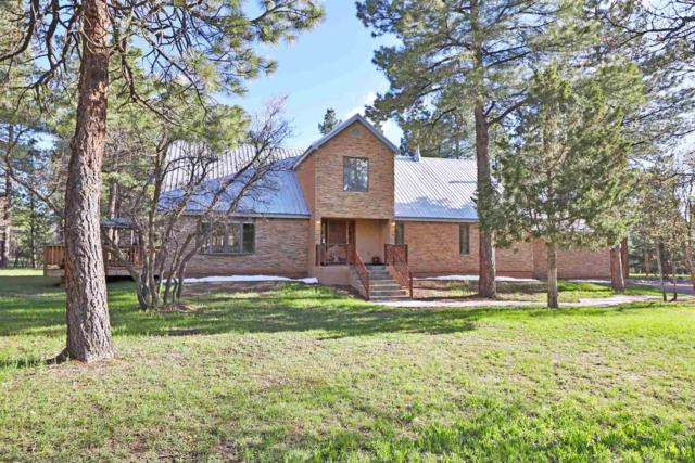 3 Private Drive 1753, Brazos, NM 87520 (MLS #201902261) :: The Very Best of Santa Fe