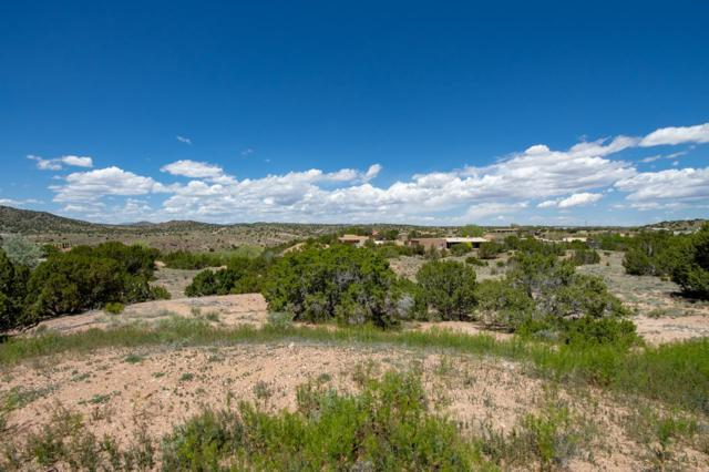 7 Vista Lagunitas Lot 41, Santa Fe, NM 87507 (MLS #201902267) :: The Desmond Group