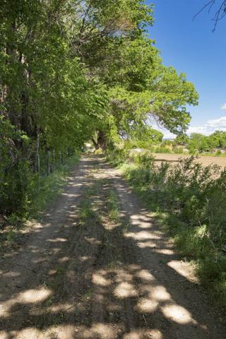 Sile Road Farm Land, Sile, NM 87041 (MLS #201902310) :: Berkshire Hathaway HomeServices Santa Fe Real Estate