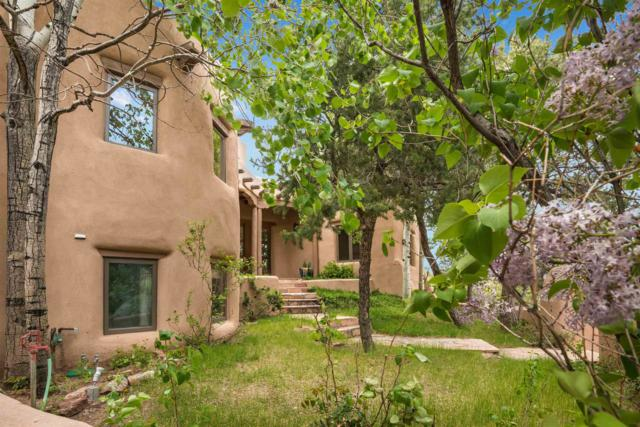 7394 Old Santa Fe Trail, Santa Fe, NM 87505 (MLS #201902358) :: The Desmond Group