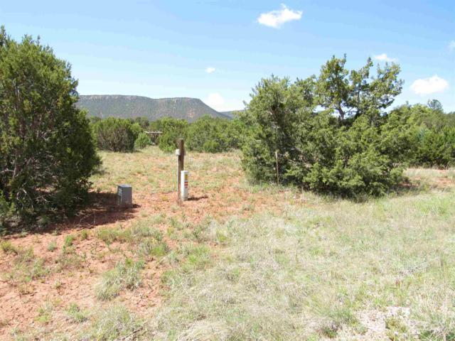 66 Via Getruditas Loop, Pecos, NM 87552 (MLS #201902375) :: The Very Best of Santa Fe