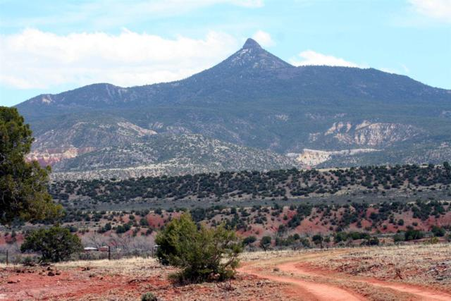 County Road 0211, Youngsville, NM 87064 (MLS #201902405) :: The Desmond Group