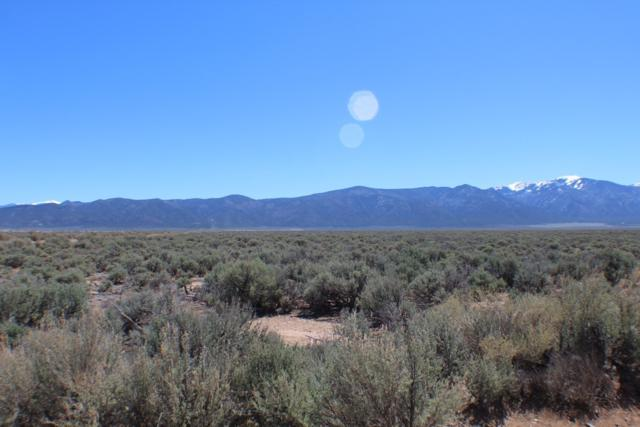 Carter Tract, Questa, NM 87556 (MLS #201902431) :: The Desmond Group