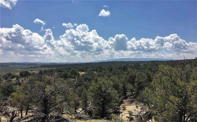 County Road 411, Lindrith, NM 87029 (MLS #201902510) :: The Desmond Group