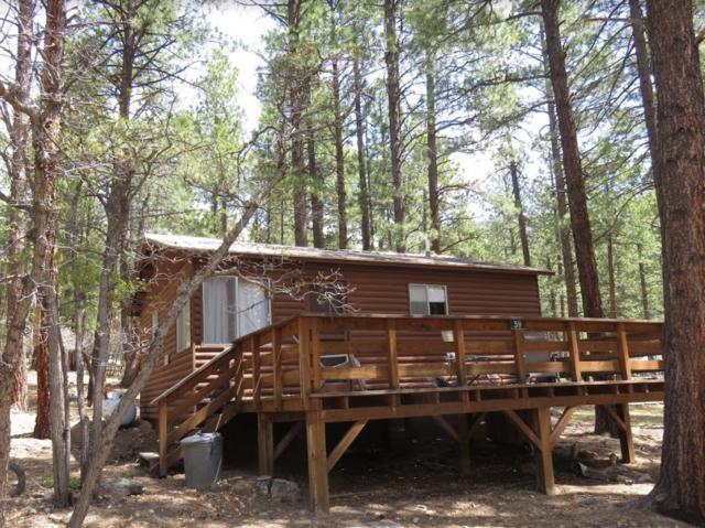 Lots 13,14,1 Brazos Circle & Lake View Drive Brazos Lodge Es, Chama, NM 87520 (MLS #201902567) :: The Very Best of Santa Fe