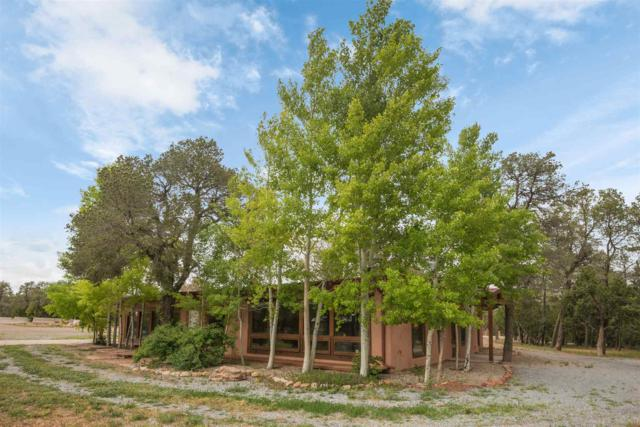 166 Nm State Road 50, Pecos, NM 87552 (MLS #201902571) :: The Very Best of Santa Fe
