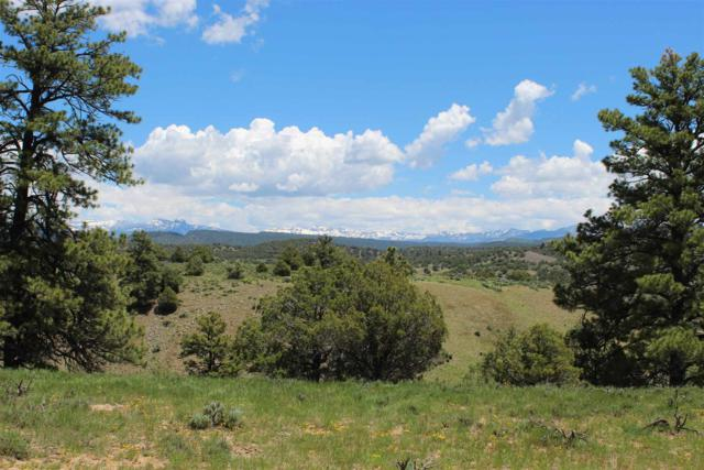 15157 Road 500, Unknown, CO 81147 (MLS #201902616) :: The Desmond Group