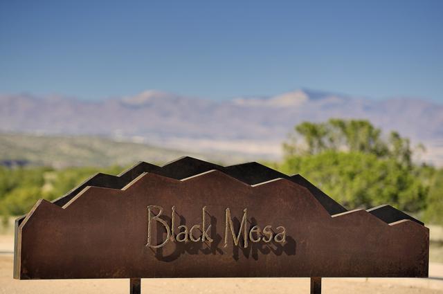 11 Via Palomita (Lot 11, Black Mesa), Santa Fe, NM 87506 (MLS #201902650) :: The Desmond Group
