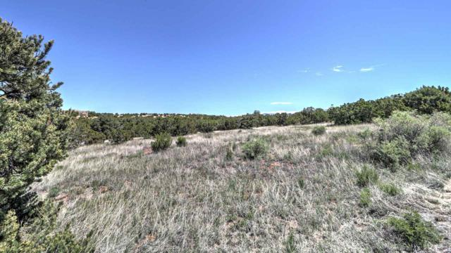 31 Star Dancer Trail, Santa Fe, NM 87506 (MLS #201902689) :: The Desmond Group