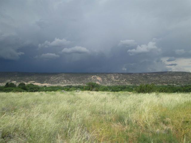 Parcel E Private Drive 1064, State Road 68, Alcalde, NM 87511 (MLS #201902732) :: The Very Best of Santa Fe